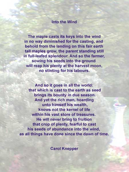 Into The Wind - A Humanitarian Poem by Carol Knepper