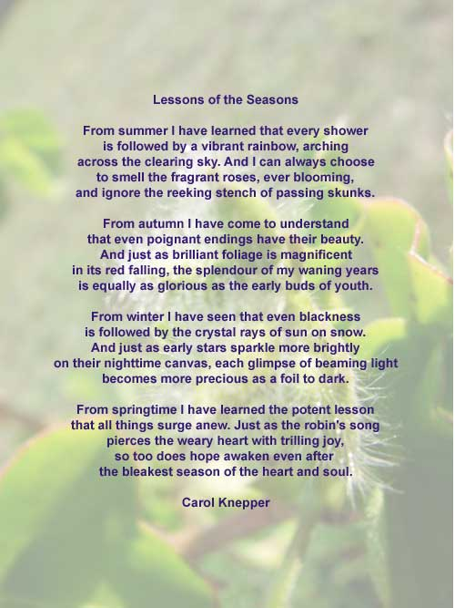 Lessons of the Seasons - A Nature Poem by Carol Knepper